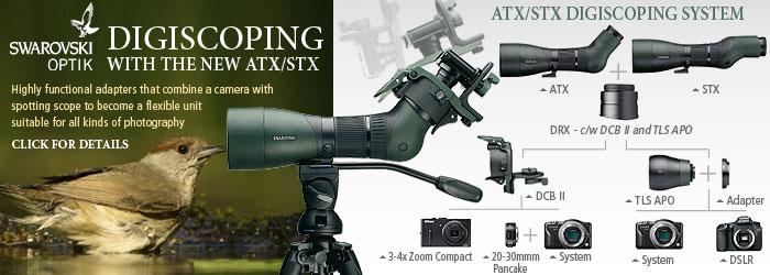 Swarovski Optik Digiscoping with the new STX / ATX