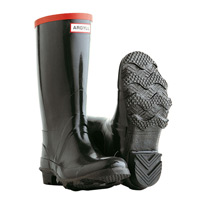 Hunter Argyll Ladies Wellington Boots - Black
