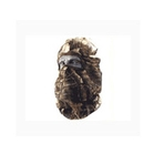 Hunters Specialties Nylon Head Net